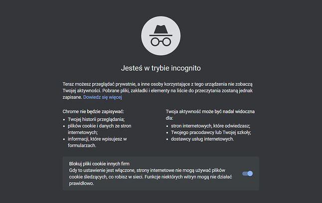 Strona startowa trybu incognito w Google Chrome, fot. Oskar Ziomek.