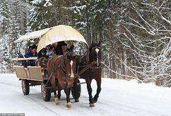 Dobra wiadomość dla niedzielnych turystów w Tatrach. Wozy konne nad Morskie Oko będą kursowały dłużej