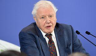 David Attenborough założył konto na Instagramie. Pobił rekord Jennifer Anist