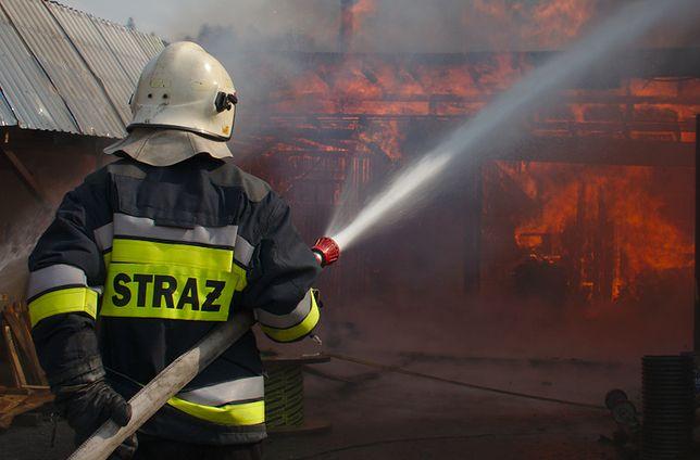 Pożar w Stalowej Woli. Płonęły dwie hale tartaku
