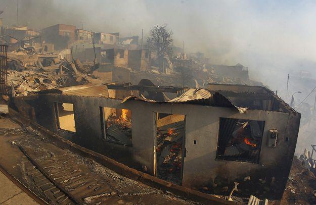 Chile: gigantyczny pożar lasów. 5 miejscowości w płomieniach