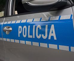 Policja zatrzymała 3 autokary na S8. To kibice Dinamo Zagrzeb