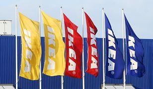 Najdroższy obraz świata do kupienia w Ikea? Zaskakująca promocja sieci
