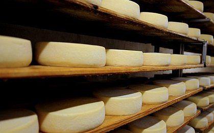 Rosja zakwestionowała 12 ton polskich serów