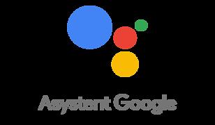 Asystent Google dostępny jest na telefonach z Androidem 5.0 i starszym oraz na iPhone'ach