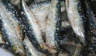 Lublin: znaleziono przeterminowane ryby. Miały trafić do sklepów