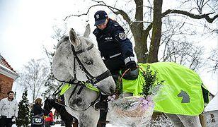 Ze święconką na koniach