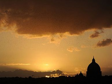 Inwestycja Watykanu przy bazylice św. Pawła nielegalna?