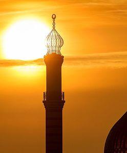 Jan Wójcik: Bractwo Muzułmańskie pod lupą