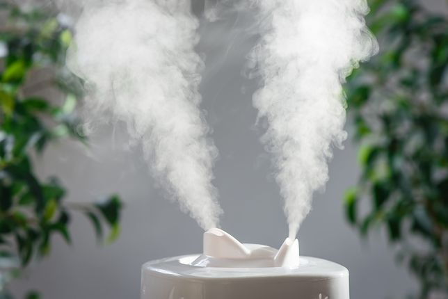Suche powietrze w domu szkodzi zdrowiu. Sprawdź, jak się przed tym ustrzec!