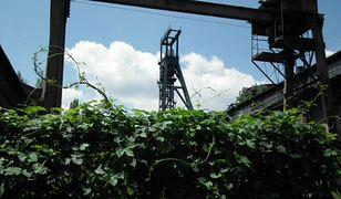 Jest w końcu raport po tragicznym wstrząsie w kopalni Wujek-Śląsk