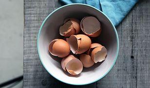 Wszechstronna moc skorupek po jajkach