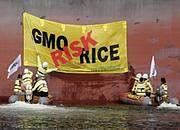 UE wzmacnia kontrole chińskich produktów z ryżu