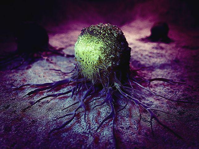Odkrycie naukowców przybliża nas do pokonania raka