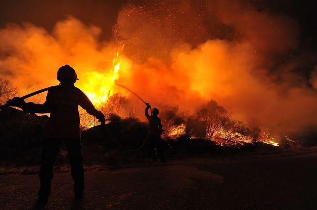 Ogromny pożar na wyspie Eubea