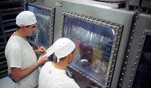 NASA prowadziła badania na zwierzętach od sierpnia 1969 roku
