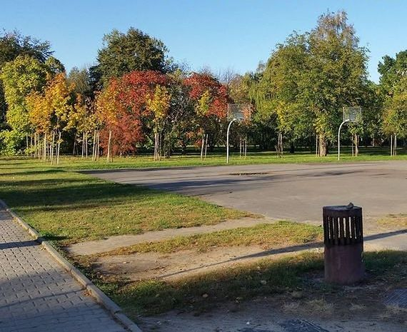 """Wytną drzewa w parku na Woli i postawią duży budynek. Mieszkańcy: """"to pozbawianie miasta terenów zieleni"""""""