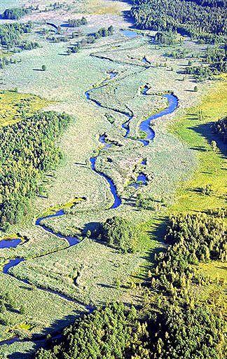 Wariant drogi ekologów powoduje większe straty w przyrodzie
