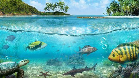 Na Ryby: podstawy rozgrywki i tryby rozgrywki wieloosobowej