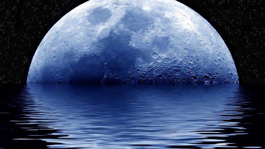 Pale Moon idzie swoją drogą: wprowadza wersję 64-bit i zrywa z Windows XP