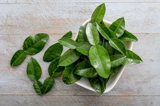 Liście kaffiru – cytrynowa moc w kuchni