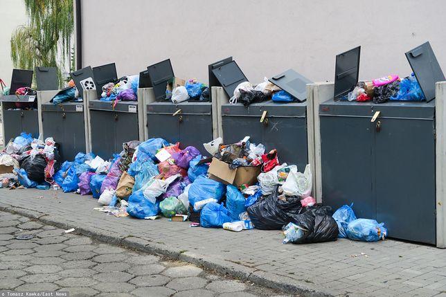 Drożyzna przy śmietniku. W Wałbrzychu czteroosobowa rodzina zapłaci nawet 216 zł miesięcznie