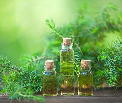 Olejek pichtowy jest pozyskiwany z jodły syberyjskiej