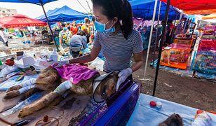 Co roku podczas festiwalu psiego mięsa w Yulin ginie od 10 do 15 tys. psów