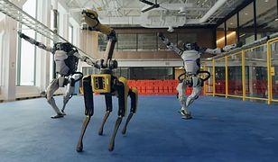 Roboty Boston Dynamics w nietypowej roli. Testują swoje zdolności na parkiecie [Wideo]