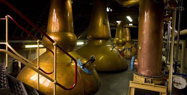 Z wizytą w destylarni whisky