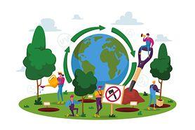 Ekologia. Definicja, podział i najważniejsze pojęcia