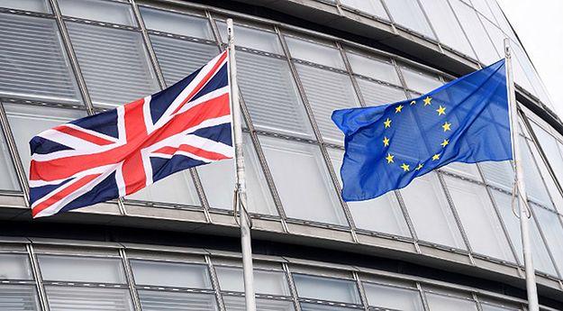 """""""Daily Telegraph"""": obywatele UE będą mogli zostać w Wielkiej Brytanii. Polacy na Wyspach mogą być spokojni?"""