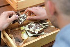 Walka z otyłością. Największe holenderskie miasta chcą pozbyć się fast foodów