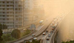 Oczyszczanie powietrza ze smogu leży w interesie każdego człowieka.