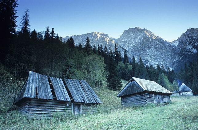 Dolina Strążyska w Tatrach.