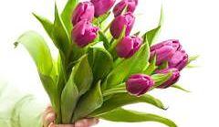 kwiaty bukiet