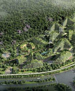 Leśne miasto w Chinach. Projekt, jakiego świat jeszcze nie widział