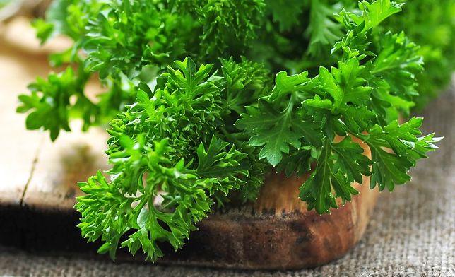 Natka pietruszki to zielona bomba witaminowa. Przepisy z natką piertruszki