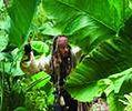 ''Piraci z Karaibów 5'': Johnny Depp ranny. Zdjęcia wstrzymane