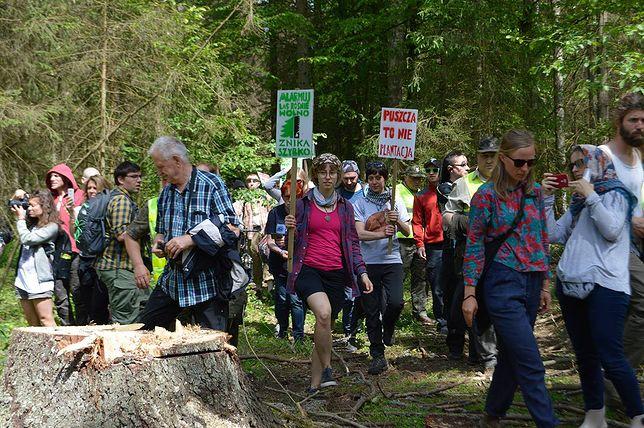 """Ekolodzy zakładają """"Obóz dla Puszczy"""". Każdy może dołączyć"""