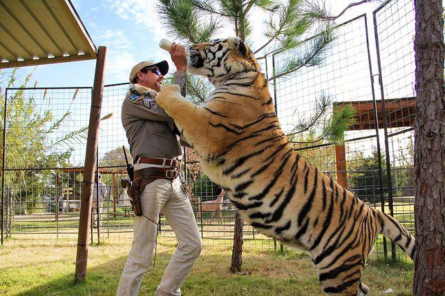 Tiger King Park obecnie odwiedzają tłumy.