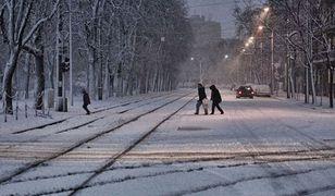 Najlżejsza zima od 10 lat. Miasto zaoszczędziło 40 mln zł