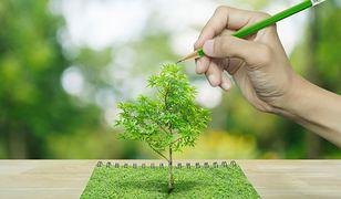 Książka, z której wyrośnie drzewo. Niezwykły pomysł małego wydawnictwa