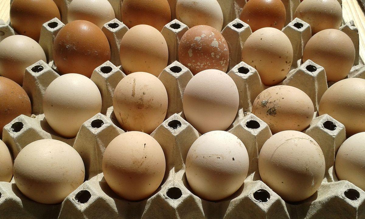 Nowe środki przeciwdziałania oszustwom na rynku żywności. Jest propozycja UE