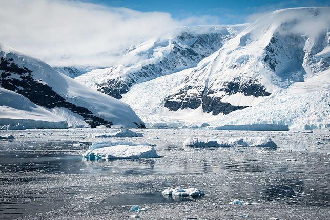 Niezwykłe odkrycie na Antarktydzie. Znaleziono tam największy na Ziemi kanion