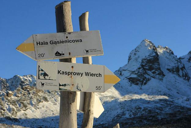 W Tatrach spadł żółty śnieg