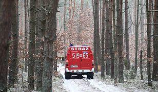 Strażacy wspólnie z żołnierzami zabezpieczali miejsce katastrofy MiG-29