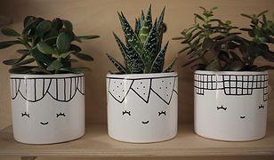 Pomysł na biznes: Ręcznie malowana porcelana