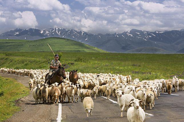 Krajobraz Armenii zapiera dech w piersiach na każdym kroku