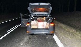 Zwierzę wpadło do auta. Ranny kierowca w wypadku pod Biłgorajem